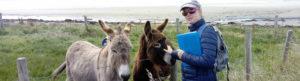 Auriel Robinson stroking donkeys