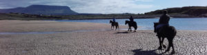Horses on Trawalua beach with Benbulben in distance