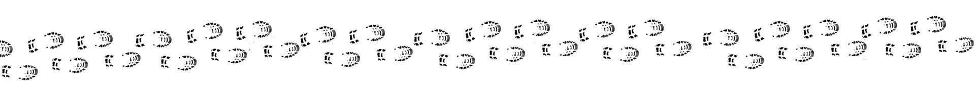 footprints5