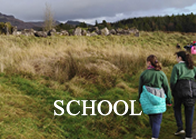Schools on Seatrails Walk