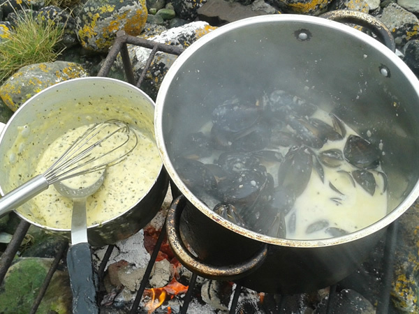 Cooking mussels in cream sauce in rocks Strandhill