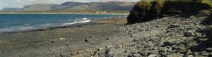 Wave Cut Rock Platform & Fossils in Sligo with Seatrails