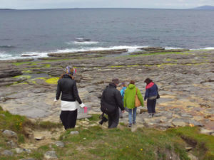 People looking at fossils with Seatrails