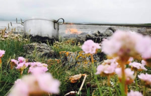 Shellfish cooking on the shore in a pot and seapink flowers on front
