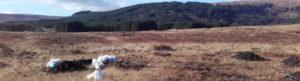 Bogland iin the Ox Mountains in Sligo