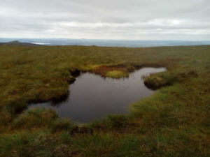 Bog pool on top of Benbulben mountain