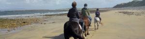 Group out horse riding on a beach in Sligo