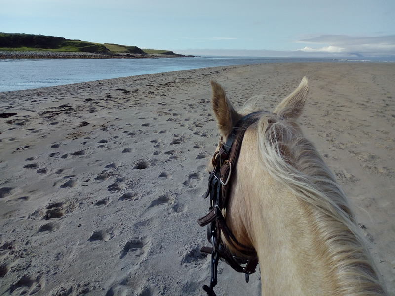 horse riding in sligo