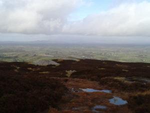 Upland bog in the Bricklieve mountains