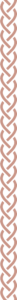 Watermark divider brown